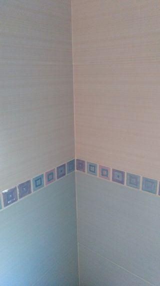 Azulejo baño