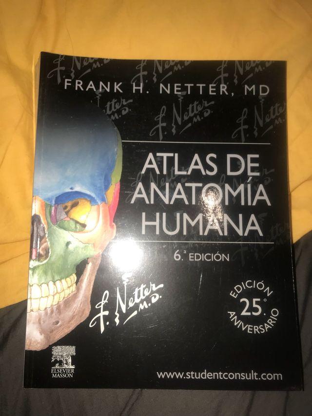 Libro Netter Atlas de Anatomía Humana de segunda mano por 60 € en ...