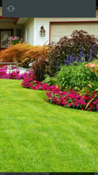 Mantenimiento jardinería
