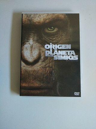 DVD El origen del planeta de los simios