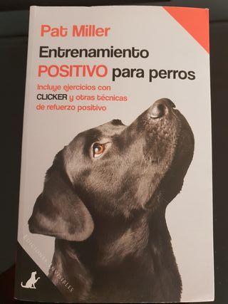 Entrenamiento positivo para perros