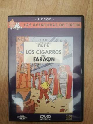 DVD Tintín y Los Cigarros del Faraón
