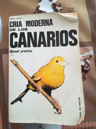 cría moderna de los canarios