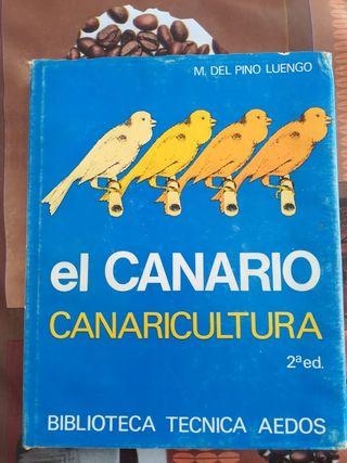 el canario. canaricultura