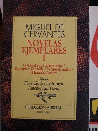 Miguel Cervantes- Novelas ejemplares I