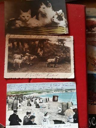 Tarjeta postal fotográfica.