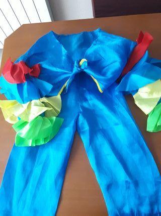disfraz infantil brasileño