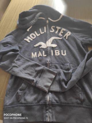 Sudadera Hollister