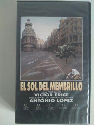 El sol del membrillo. Antonio López