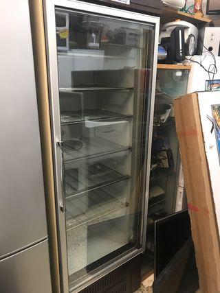 Congelador Expocitor