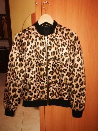 Bomber leopardo