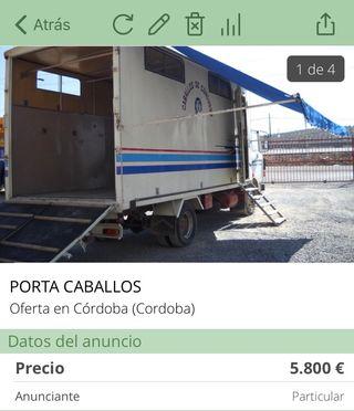 Porta caballos