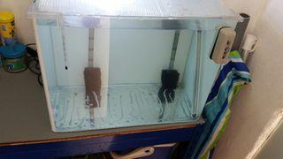 acuario de 60 litros