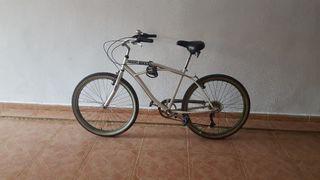 bici paseo
