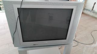 tv televisor televisión