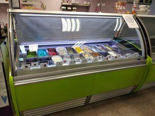 Vitrina expositora de helados OFERTA