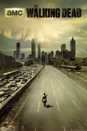 Póster The Walking Dead - city -