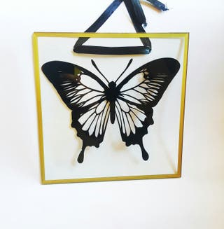 printed butterfly plaque transparent wall hanging