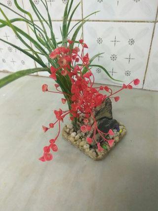 decoración para acuario