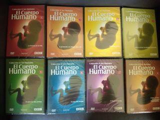 8 DVDs El cuerpo humano