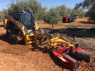 Vibrador Vibromart para olivos