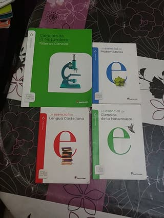 libros 6 primaria de todo un poco