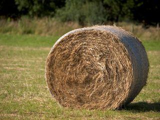 vendo rollos de hierba seca