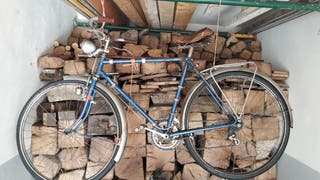 Bicicleta antigua (vintage)