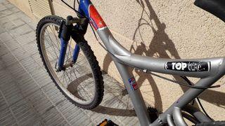 bicicleta mountain bike 2
