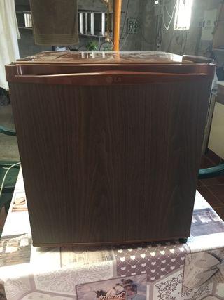 Frigorífico compacto 50 litros nevera pequeña LG