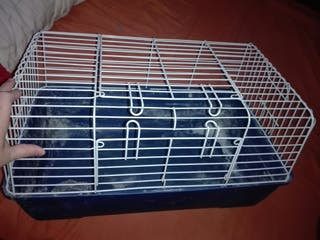 Jaula para Conejos Enanos, Cobayas...