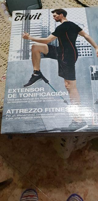 tonificar musculos