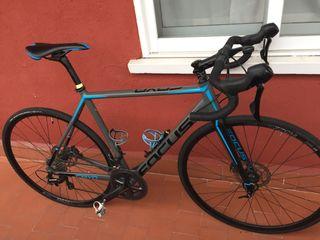 Bicicleta carretera focus cayo