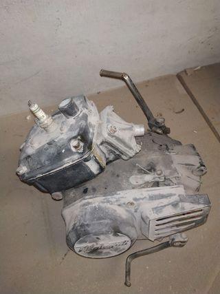 Motor Malagutti
