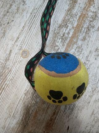 Pelota con Cuerda de Juguete para Perro