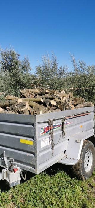 leña de olivo buen precio