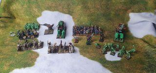 Ejército pintado condes vampiro warhammer