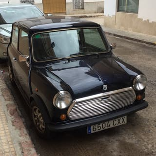 Mini Mini (old Model) 1988