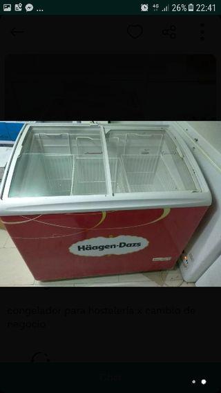 arcon congelador expositor de helados
