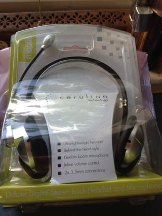 Headset and mic