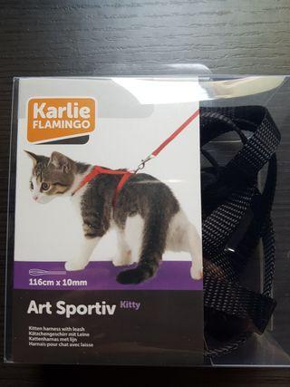 correa Gato