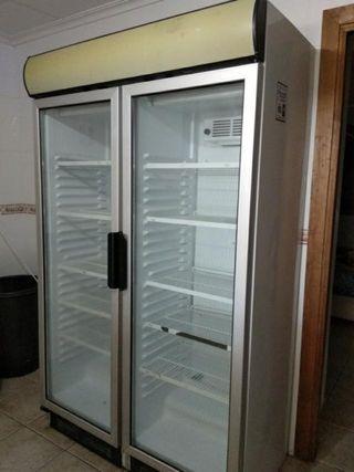 Nevera expositor 2 puertas refrigeracion
