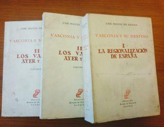 libro Vasconia y su destino
