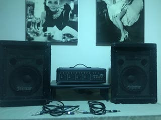 Amplificador y altavoces johnson