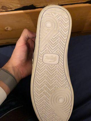 Zapatilla lacost ( nueva)