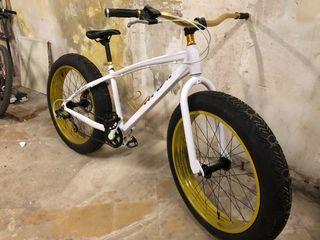 bicicleta bici ruedas gordas