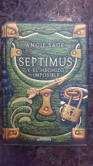 Angie Sage