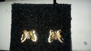 pendientes Marca Nice con Baño de oro