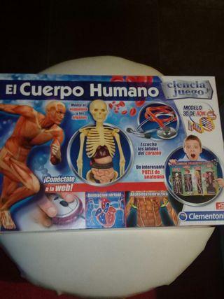 Juguete educativo el cuerpo humano