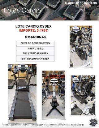LOTE CARDIO CYBEX, CINTA DE CORRER, ELIPTICA